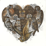 Heart shaped collection of Owls.