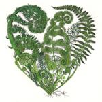 Image of fern heart