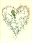 etching of a wildflower wreath in the shape of a heart
