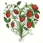 image of strawberry heart